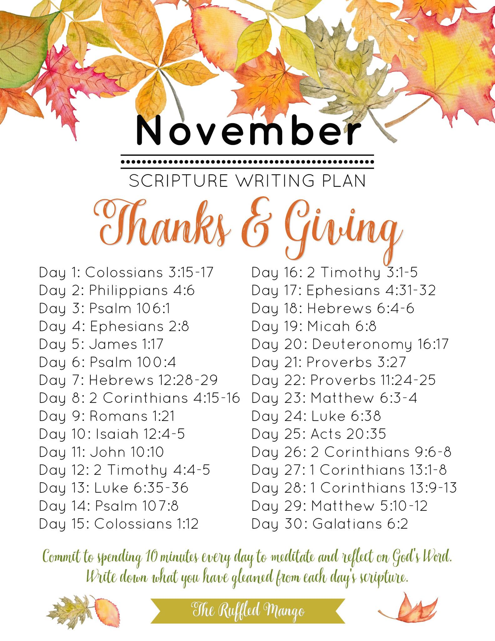 Scripture plan NOV