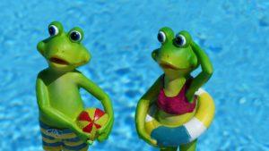 Frog vacation